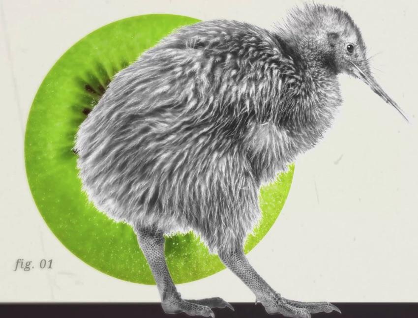 Kiwi Templeton